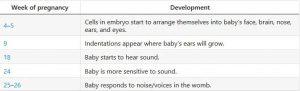 حس شنوایی جنین در بارداری